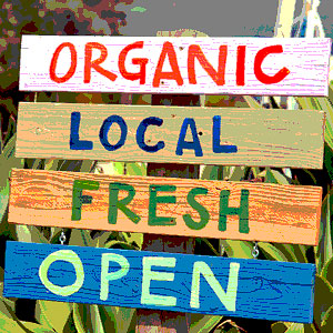 organic-fruits-vegetables-goleta